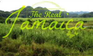 The Real Jamaica: Video and Gallery | Intentional Travelers