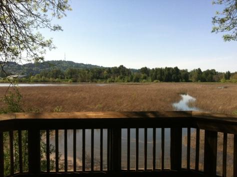 Springwater, Portland, OR | Intentional Travelers