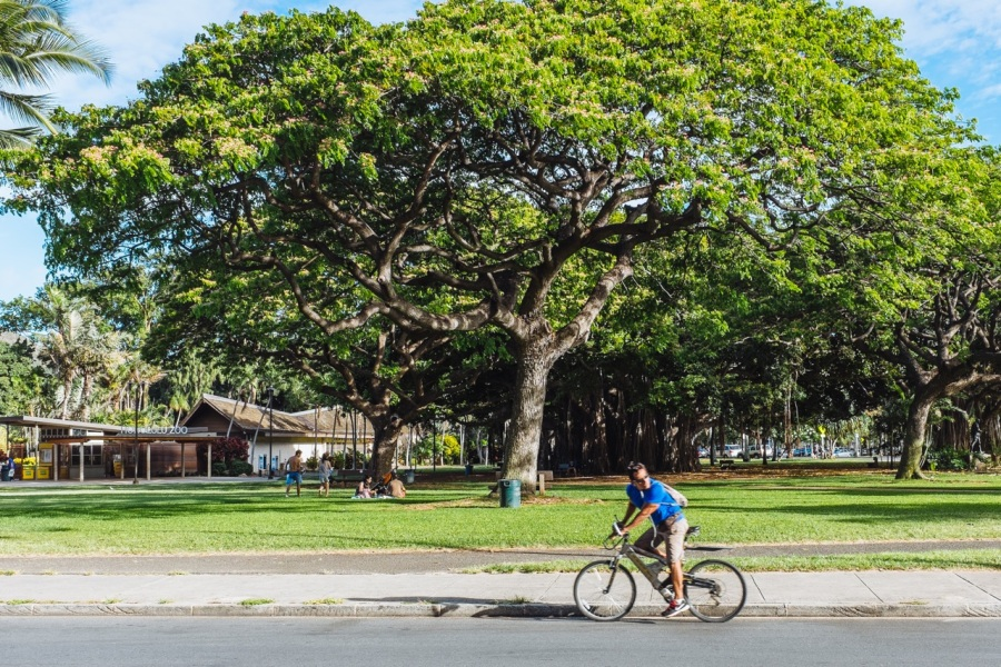 Kapiolani Park Waikiki Running Walking | Intentional Travelers