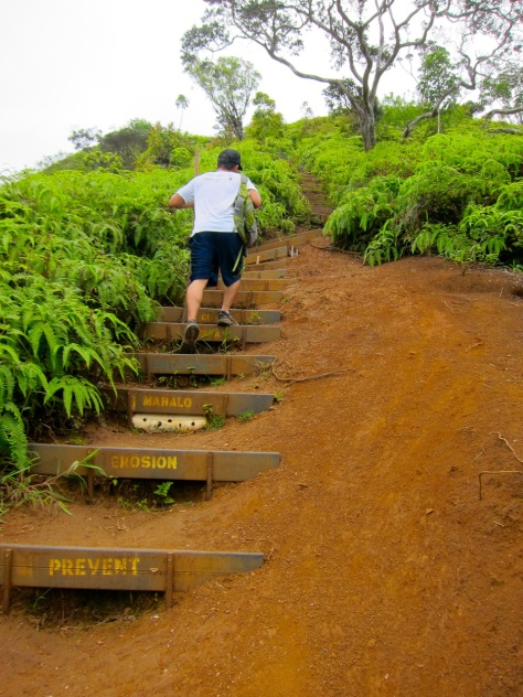 Kuli'ou'ou Valley Trail, Oahu, Hawaii | Intentional Travelers