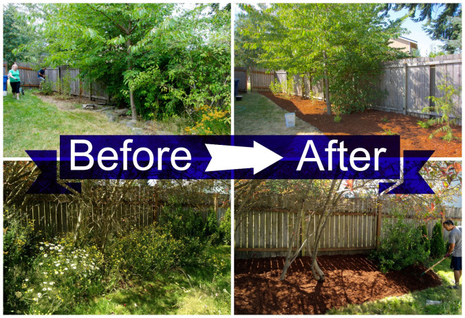 Before and After backyard | Intentional Travelers