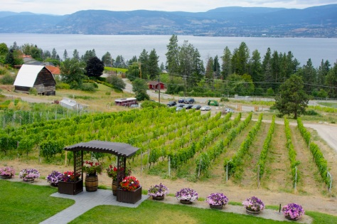Summerhill Pyramid Winery, Kelowna BC | Intentional Travelers