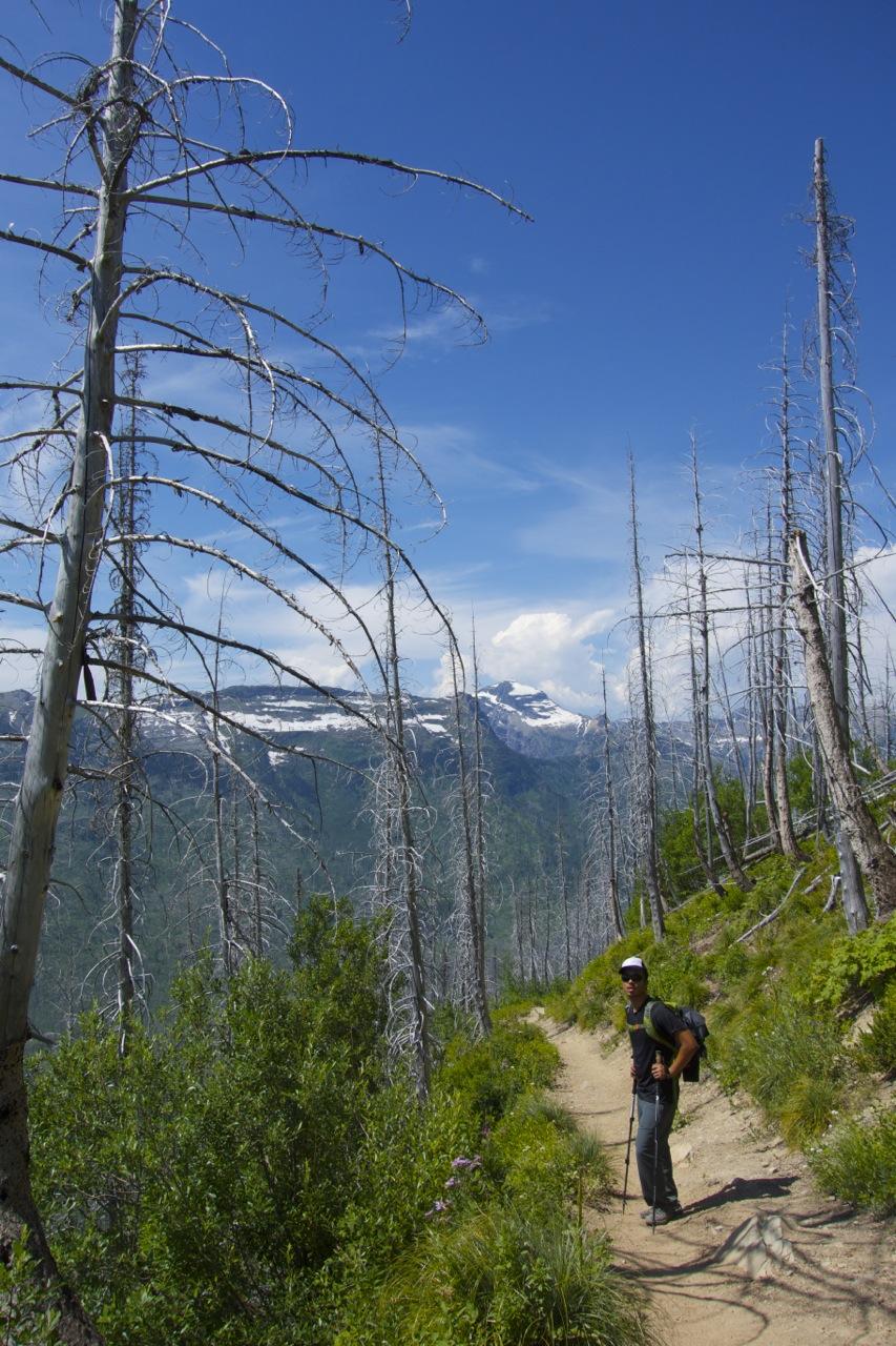 Glacier National Park, MT | Intentional Travelers