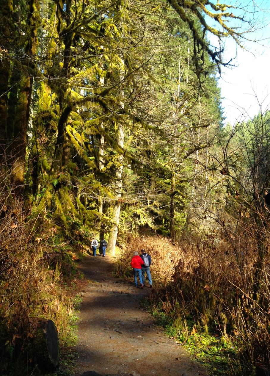 Silver-Falls-State-Park-Oregon4