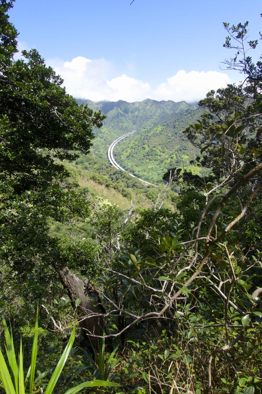 Aiea-Loop-Trail-08